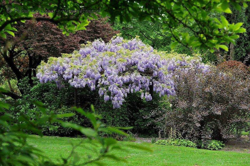 Floralia Park